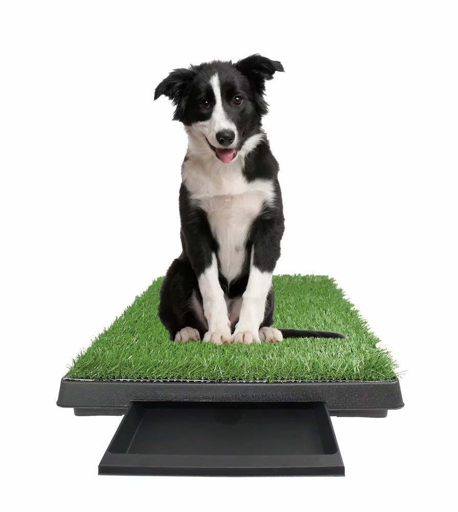 large pet potty patch dog training bathroom pad indoor or outdoor use w tray 25 x 20 x 2 walmart com