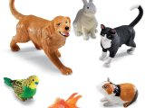 Learning Resources Jumbo Domestic Pets I Cat Dog Rabbit Guinea Pig Fish And Bird 6 Animals