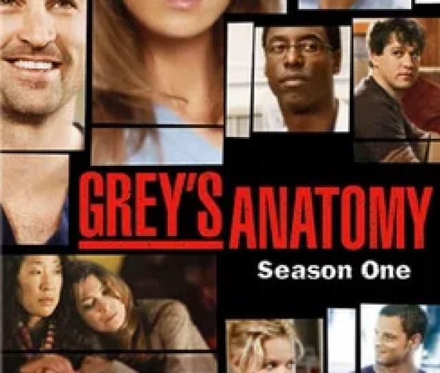Greys Anatomy Season One