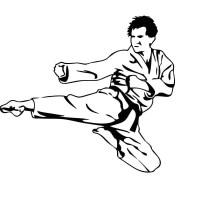 Karate Kick Sports Wall Stickers Removable - Walmart.com
