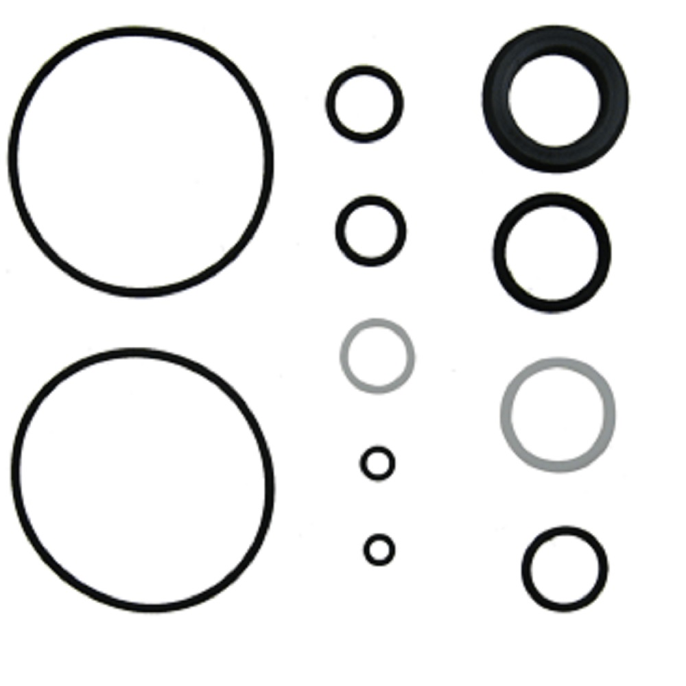 CFPN3301C New Power Steering Cylinder Seal Kit for Ford