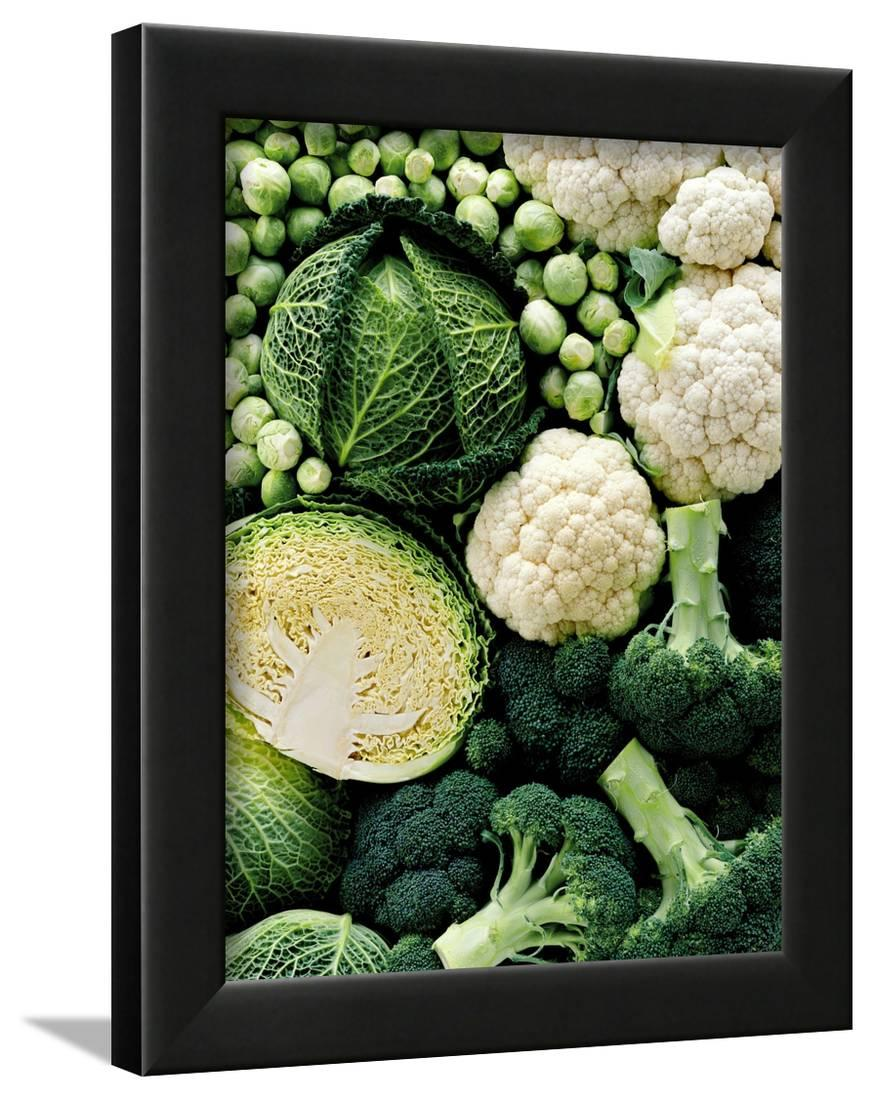 Still Life with Different Types of Cabbages Framed Print