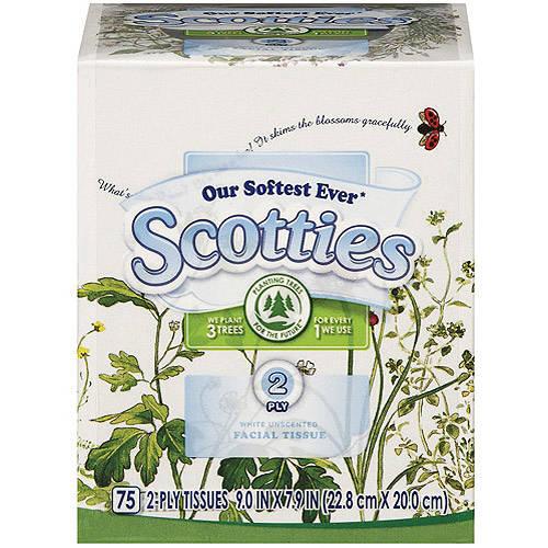 Scotties White Facial Tissue Unscented75 ct Walmartcom