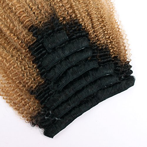 Sassina Two Tone Afro Curly Human Hair Clip In Extensions For