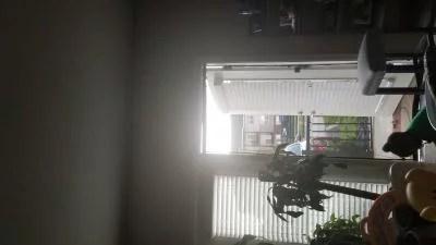 saint gobain adfors screen curtain