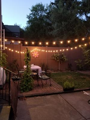 better homes gardens outdoor 20 count clear globe string lights