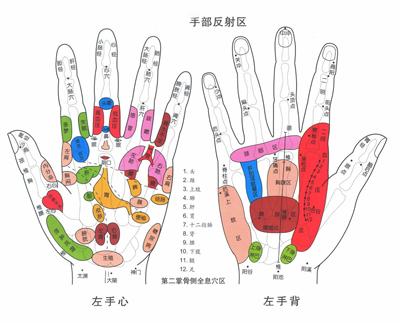 手掌穴位圖及相關按摩方法_尋醫問藥_xywy.com