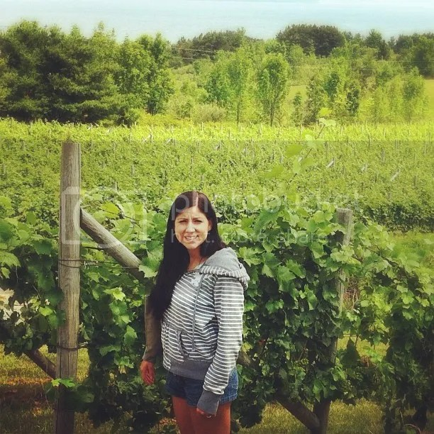 Mary at the vineyard