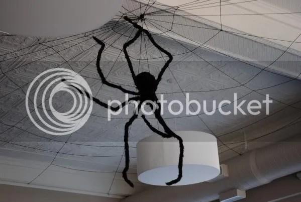 Spider at Square Burger