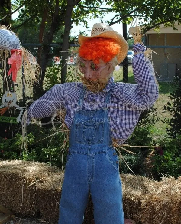 Just Kind of Frightening Scarecrow