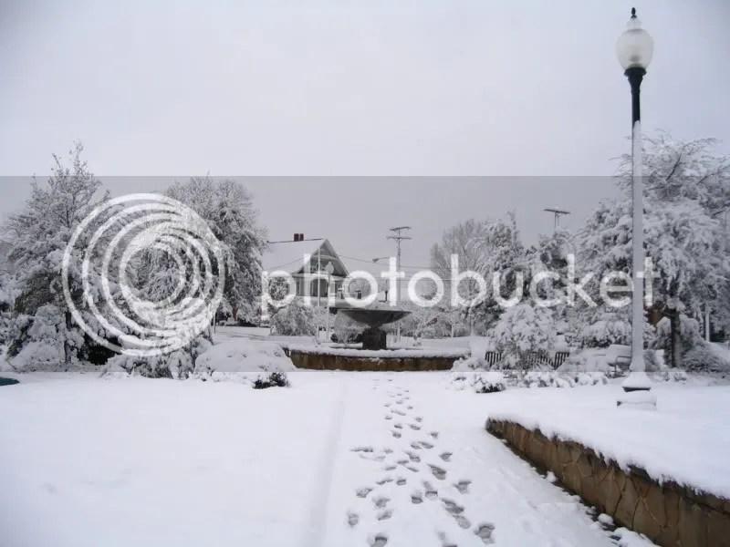 Snow in Mitchell Park