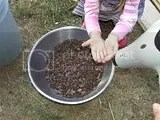 200px-Winnowing_548.jpg image by awalul