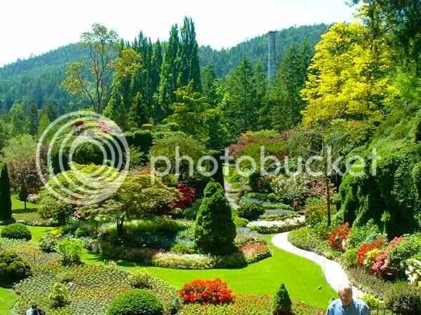 jardim O jardim mais bonito do mundo