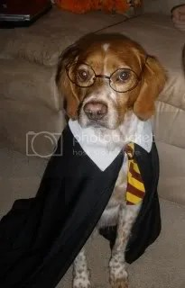 It's Uri Potter!!!