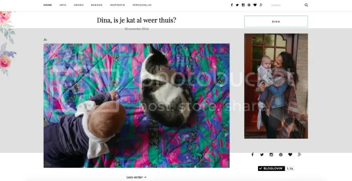 Blog, dinastie.nl