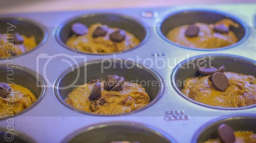 healthy flourless pumpkin chocolate chip muffins