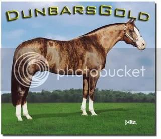 Dunbar's Gold