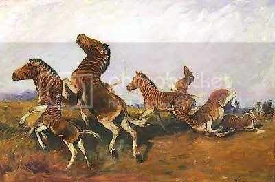 The extinction of the quagga