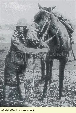 Horses wearing experimental gas masks