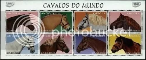 Cavalos do mondo