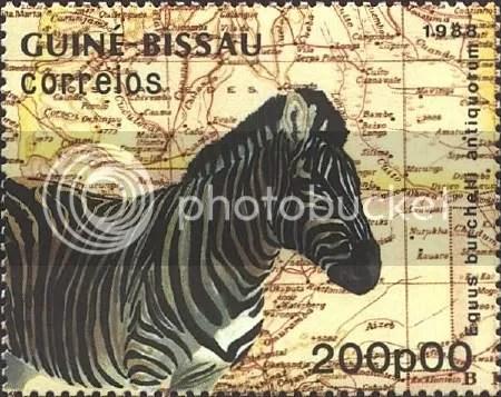 Zebra - Guinea-Bissau