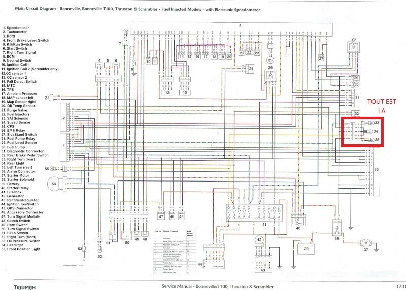 schéma Connectique Bonneville