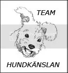 http://www.hundkanslan.se/team.php
