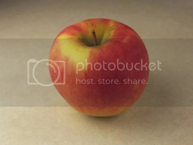 photo 2014-10-22 14.46.15_zpsqp4wjmfn.jpg