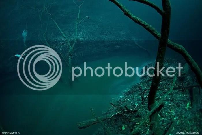 Foto Sungai Dalam Laut 4