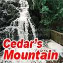 Cedars Mountain Blog