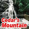 Cedars Mountain Blog