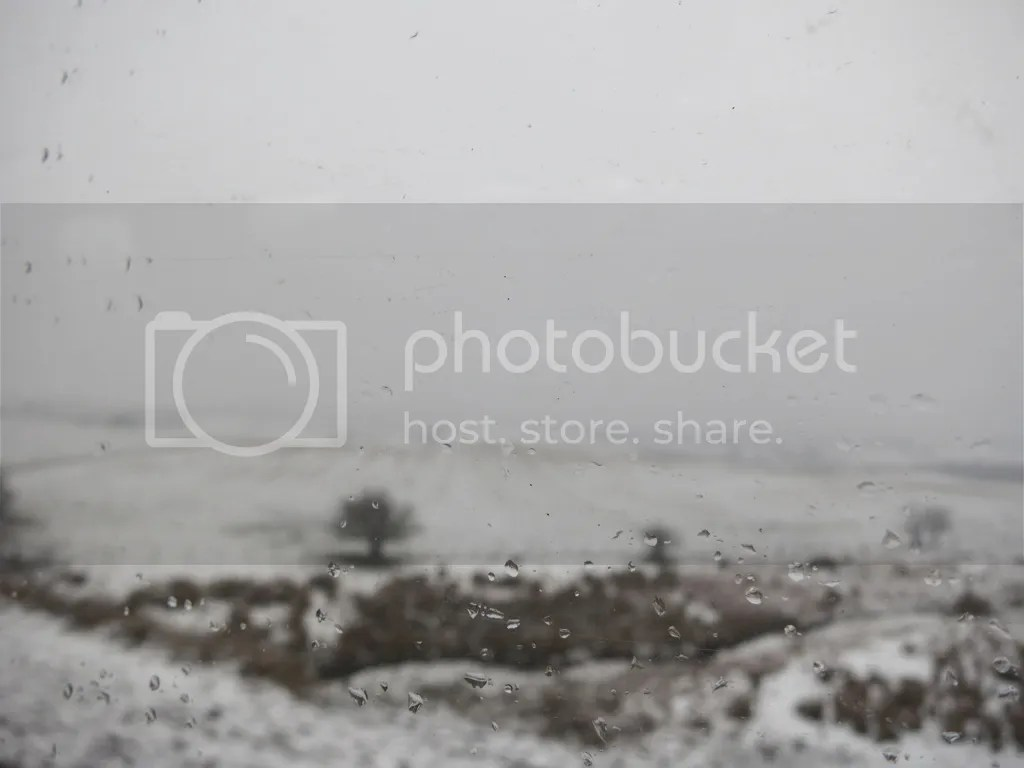 photo file-120.jpg