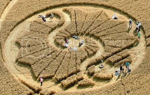 crop circle,fractal,Stanton Bridge,Wiltshire 2010