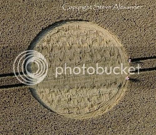crop+circle