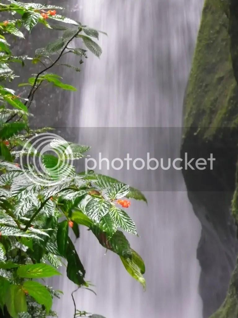 Las Cascadas, Mindo, Ecuador Pictures, Images and Photos