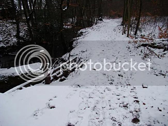 photo 2013-02-15-211_zpsba5e60b0.jpg