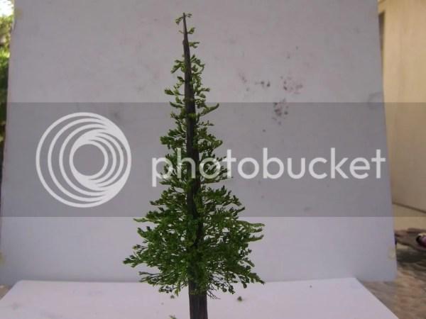 Make Model Pine Trees - Year of Clean Water