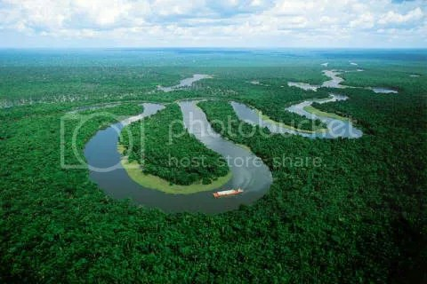 christine- amazon river Pictures, Images and Photos