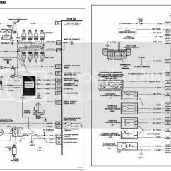 Vn Commodore Wiring Diagram Turn Signal Flasher Need Help With Pin Out For Vs V8 Series Two 1996 | Just Commodores