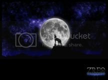 A Wolf Alone Photo by Wolfknightproductions | Photobucket