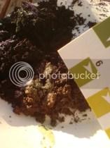 Soil testing - nice!
