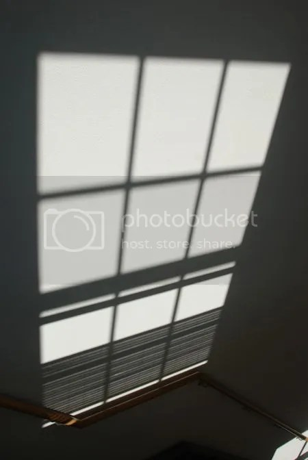 photo DSC_1403.jpg