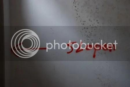 photo DSC_1308.jpg
