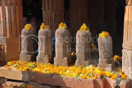 photo DSC_2217JhalrapatanTempleOfferings.jpg