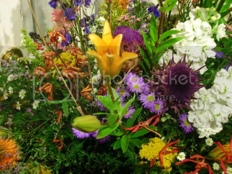 Lillies and Thistles