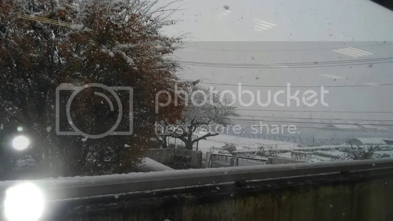 From the staffroom, about 90 minutes before it finally stopped snowing.