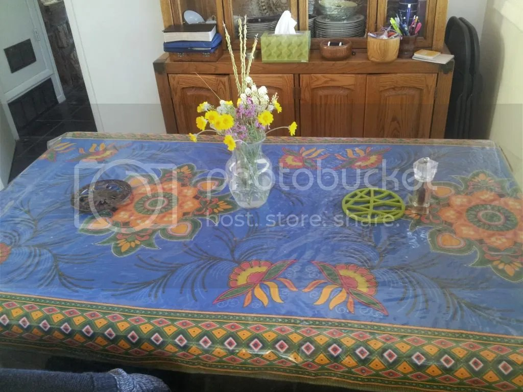 tablecloth photo 20140824_164615_zps1l5gpexf.jpg