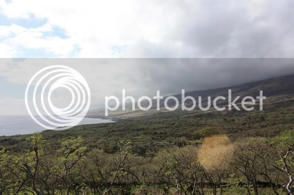photo MauiTrip170_zps34140b00.jpg