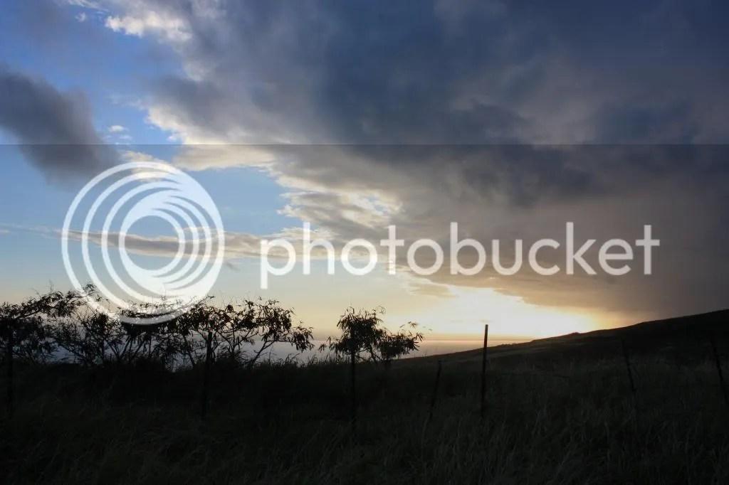 photo MauiTrip176_zpsabfbe014.jpg