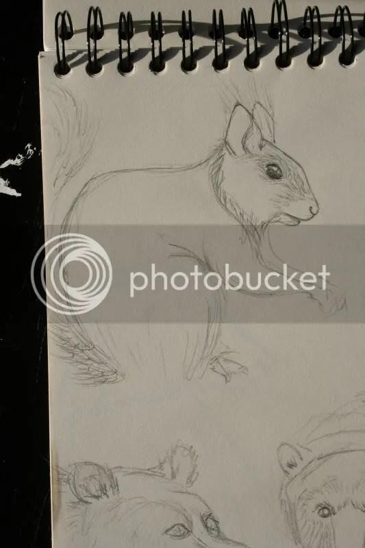 Sketchbook pt.11 - Eekhoorn